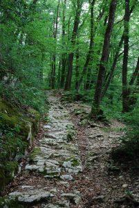 Römerweg Mitte