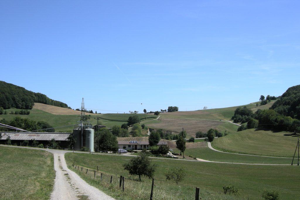 Gatterhof Staffelegg