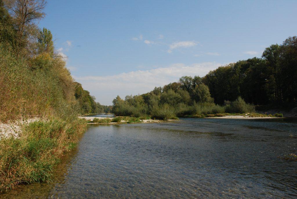Alte Aare Winznau