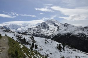 Alp Languard mit Berninagruppe