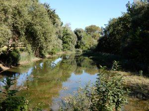 Naturschutzgebiet Geroldswil