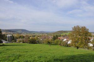 Neeracherried vom Eschenberg