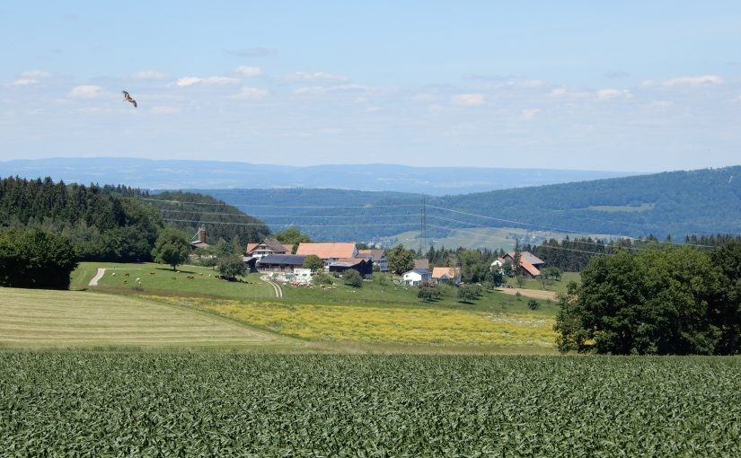 Der Weiler Heitersberg