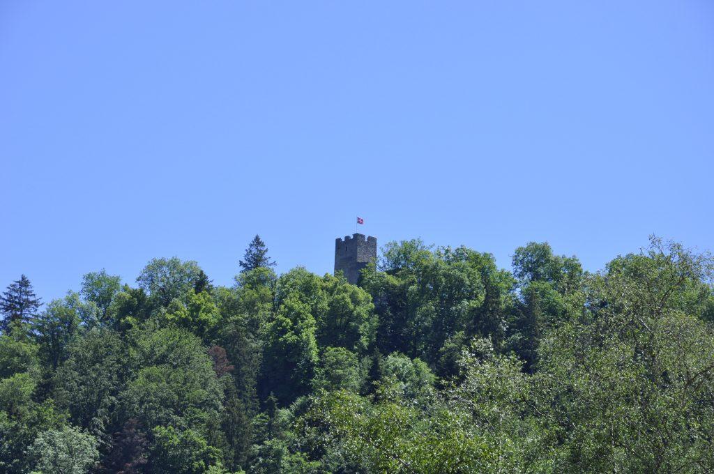 Ruine Waldenburg