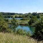 Naturschutzgebiet Vogelraupfi