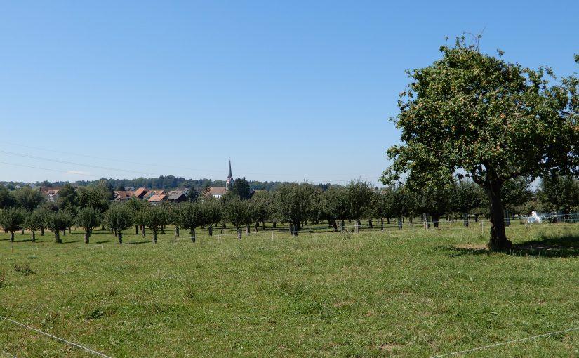 Diesmal im Thurgau gewandert