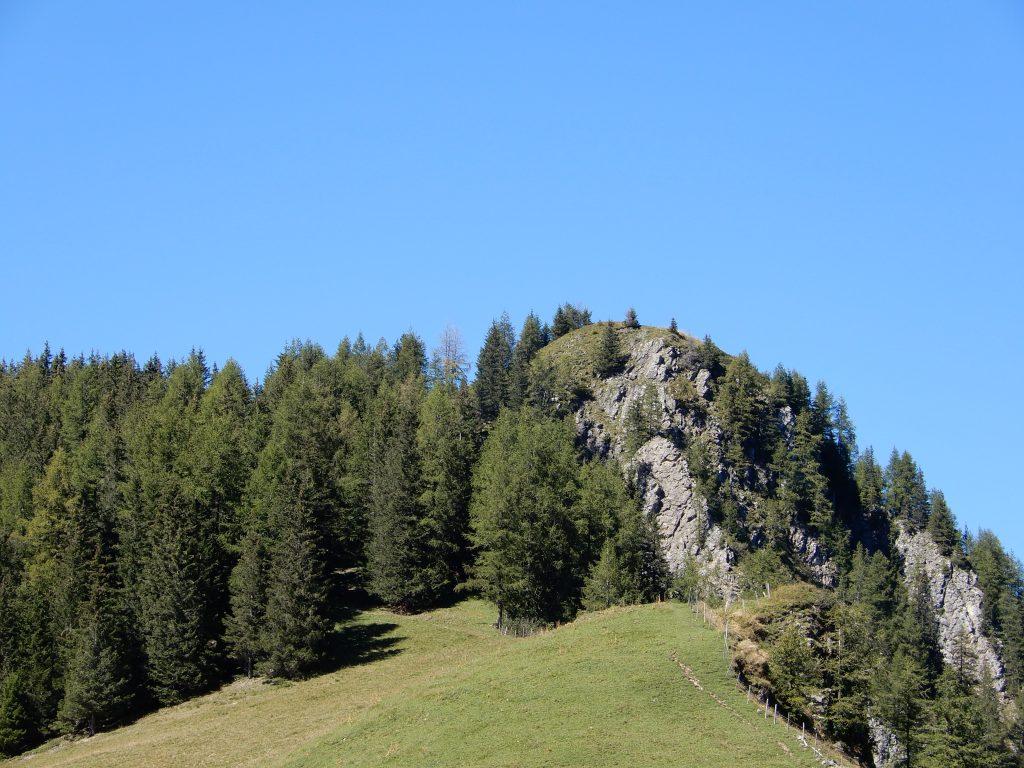 Das Oberlaubhorn