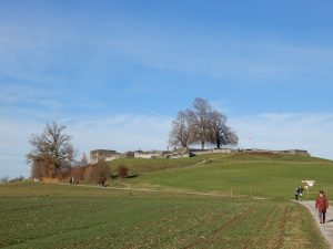 Kastell Irgenhausen