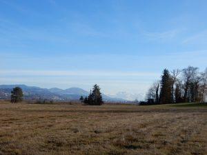 Panorama von der Holzweid