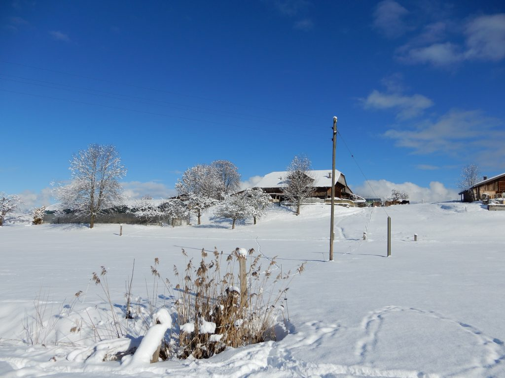 Winterstimmung in Aeschi