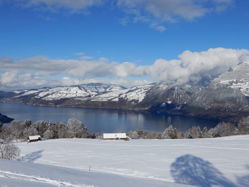 Thunersee und verschneite Berge