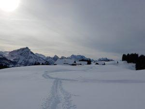 Die Alp Altschen