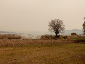 Stimmung am Zürichsee