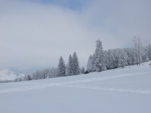 noch mehr Winterstimmung