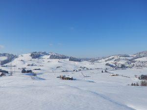 Ausblick auf den Gehrenberg