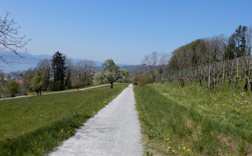 Im Oberallenberg