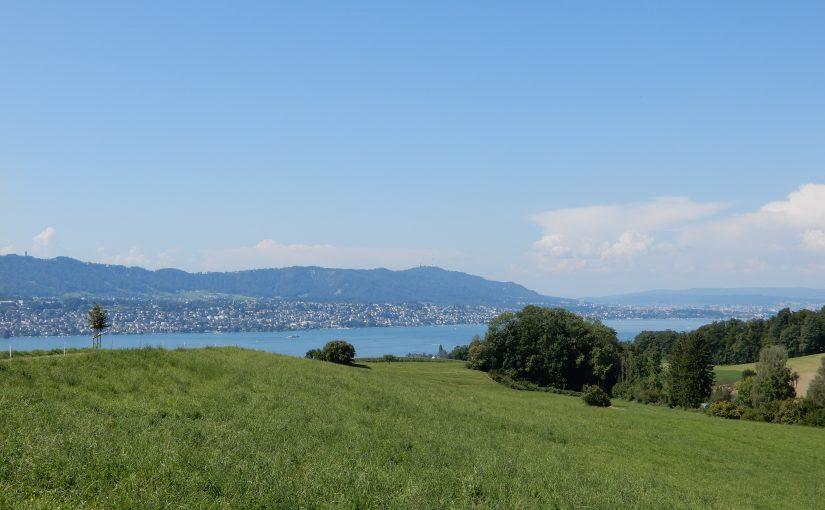 Aussicht über den Zürichsee