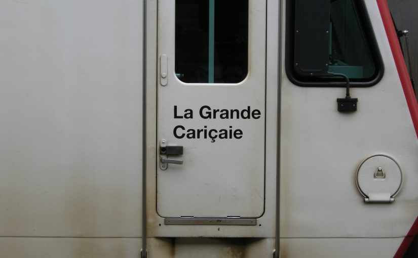 Namen La Grande Cariçaie