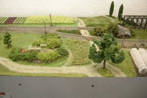 Die Ruine und die neu gestalteten Wiesen