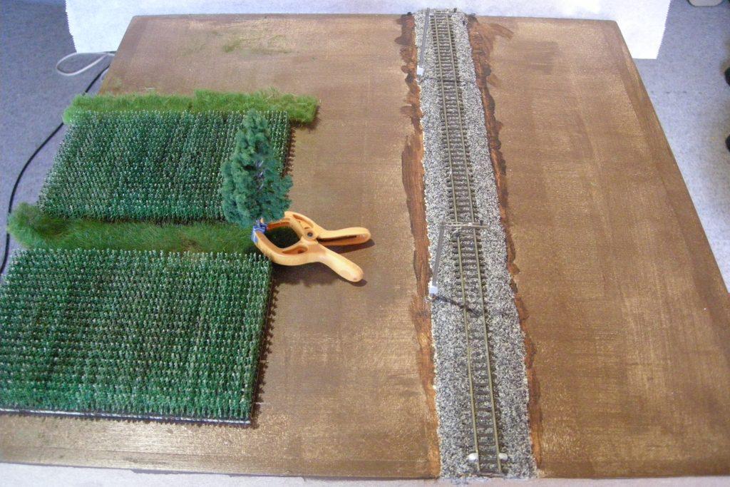 Zwei Maisfelder sind entstanden